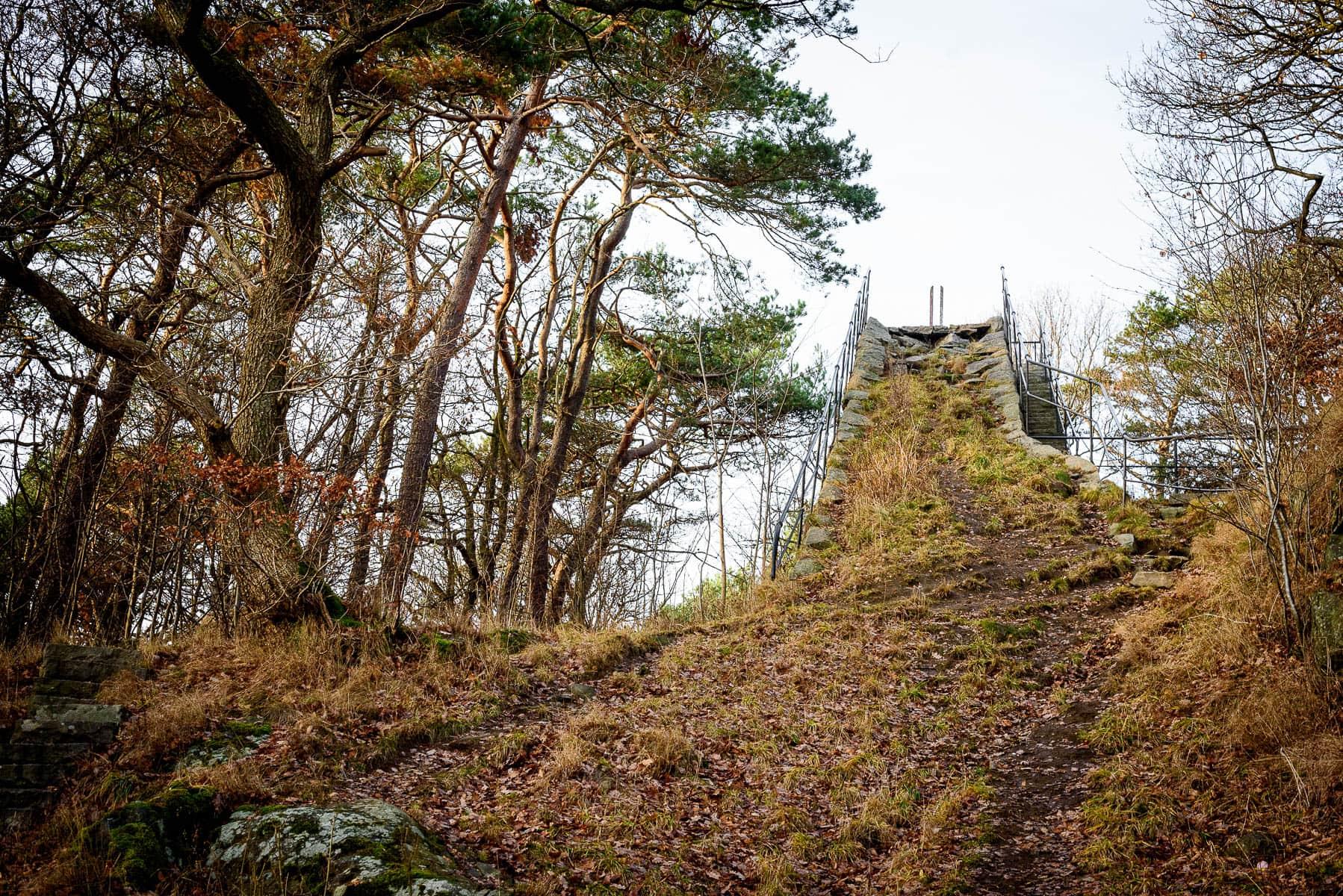 Bragebacken i Slottsskogen, Göteborg