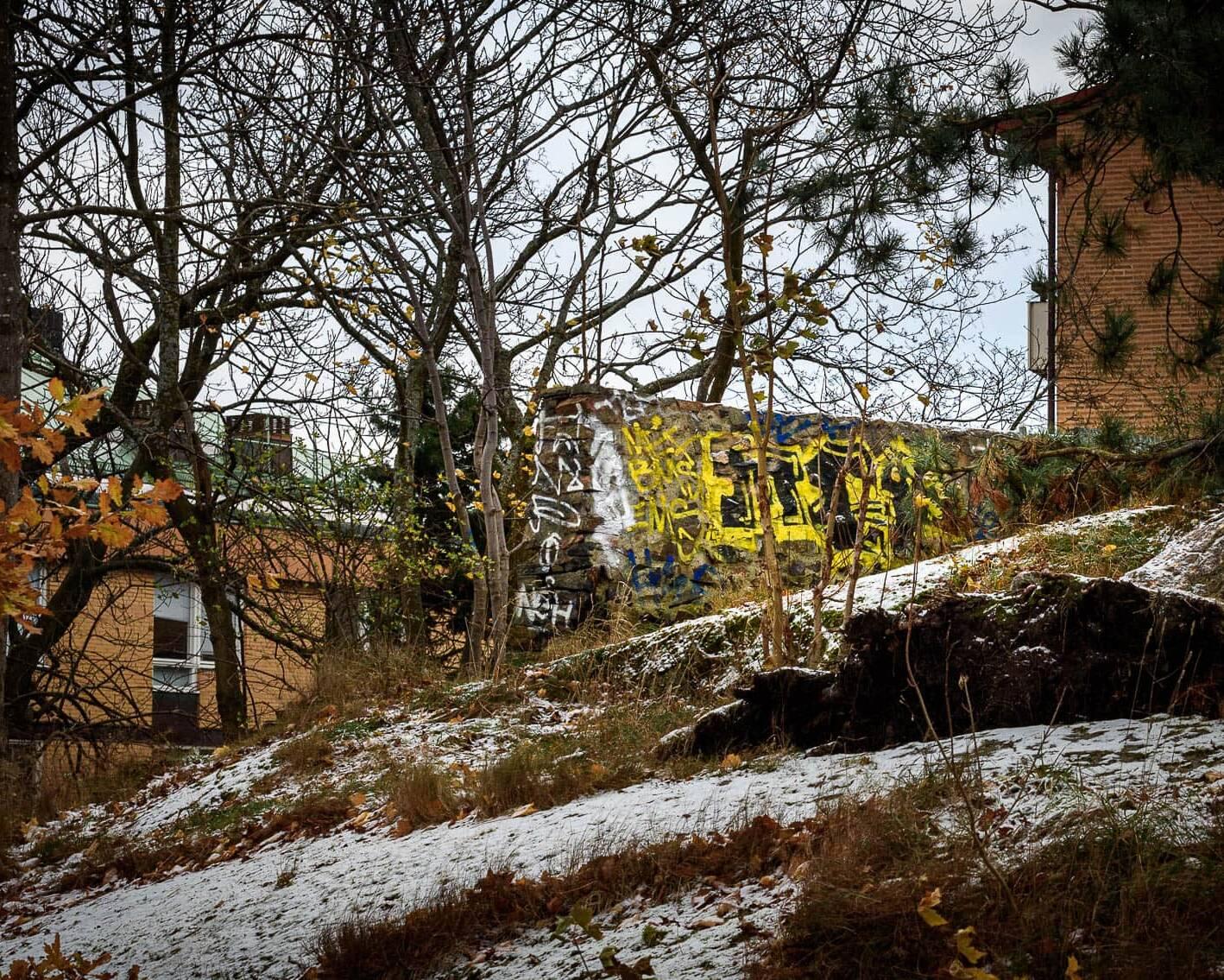 Ruin i Fogelbergsparken.