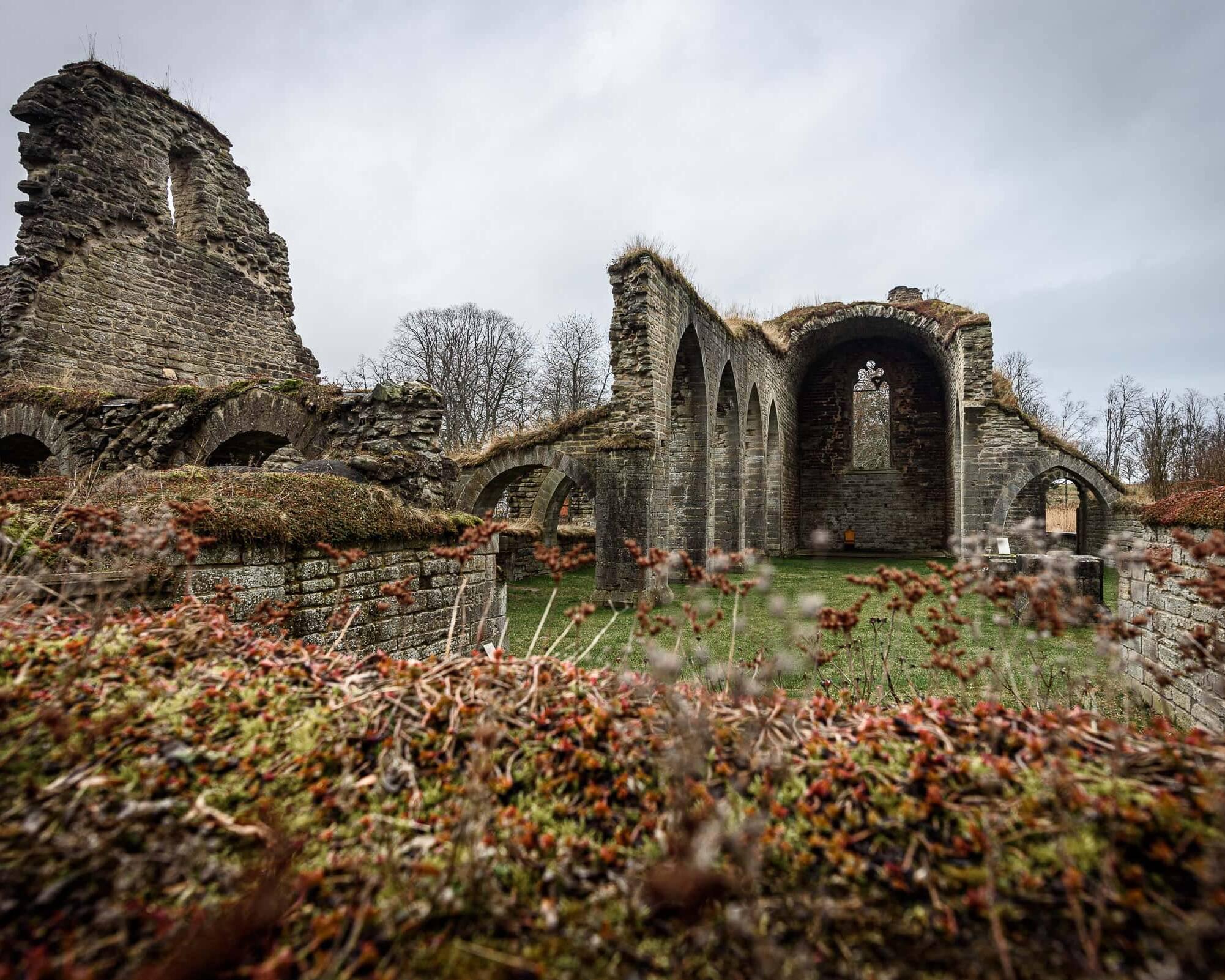 Alvastra Klosterruin 2
