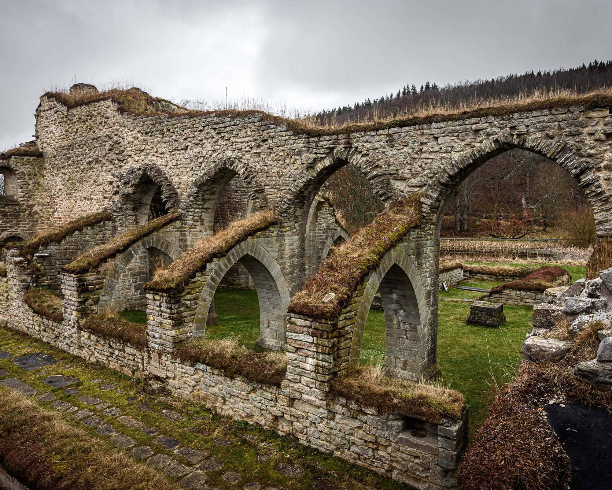 Alvastra Klosterruin 1