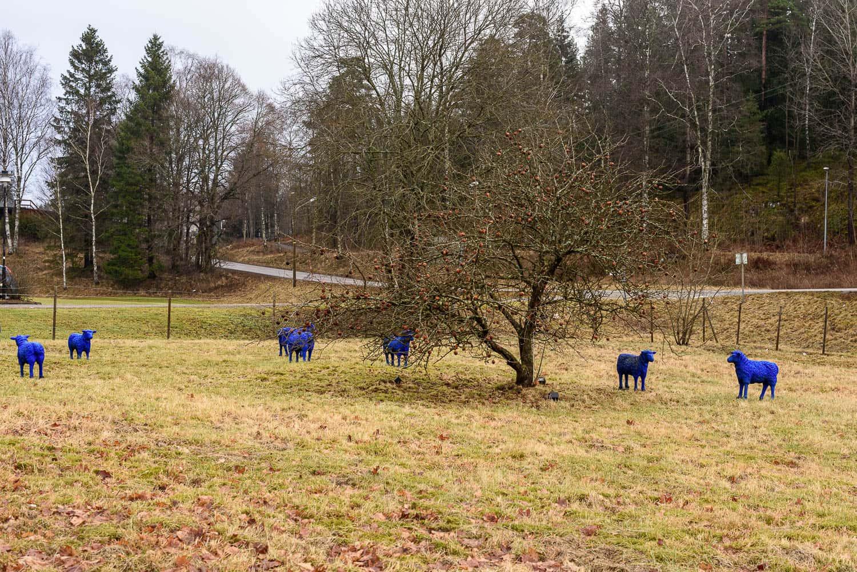 Konst i Viskafors - Blå får av Rainer Bonk
